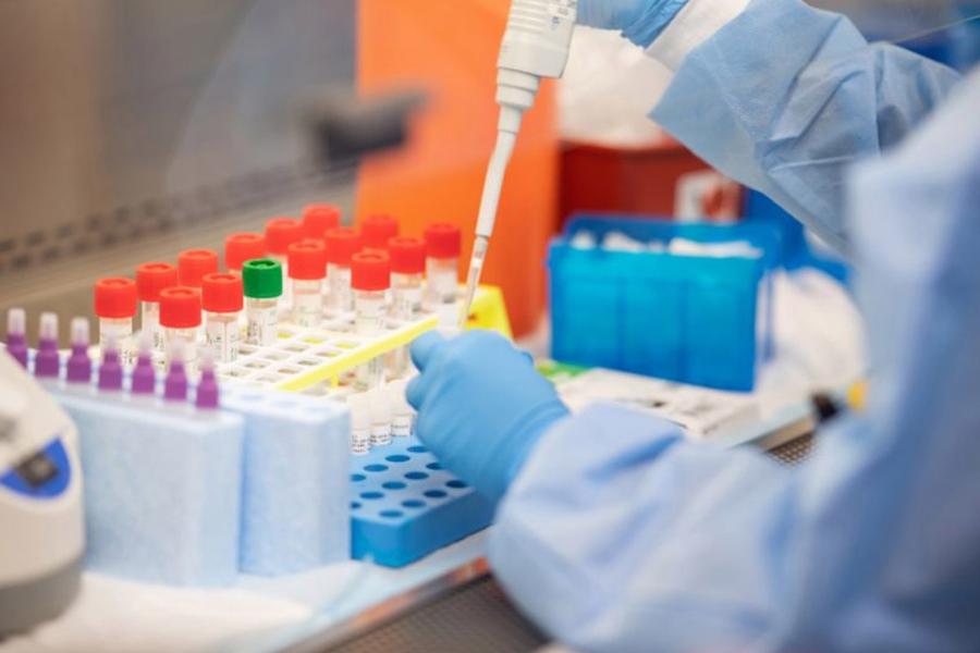 За сутки в Беларуси зарегистрированы 802 пациента с COVID-19, выписаны 805