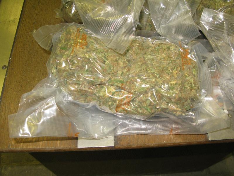 Провоз через границу конопля блины из марихуаны