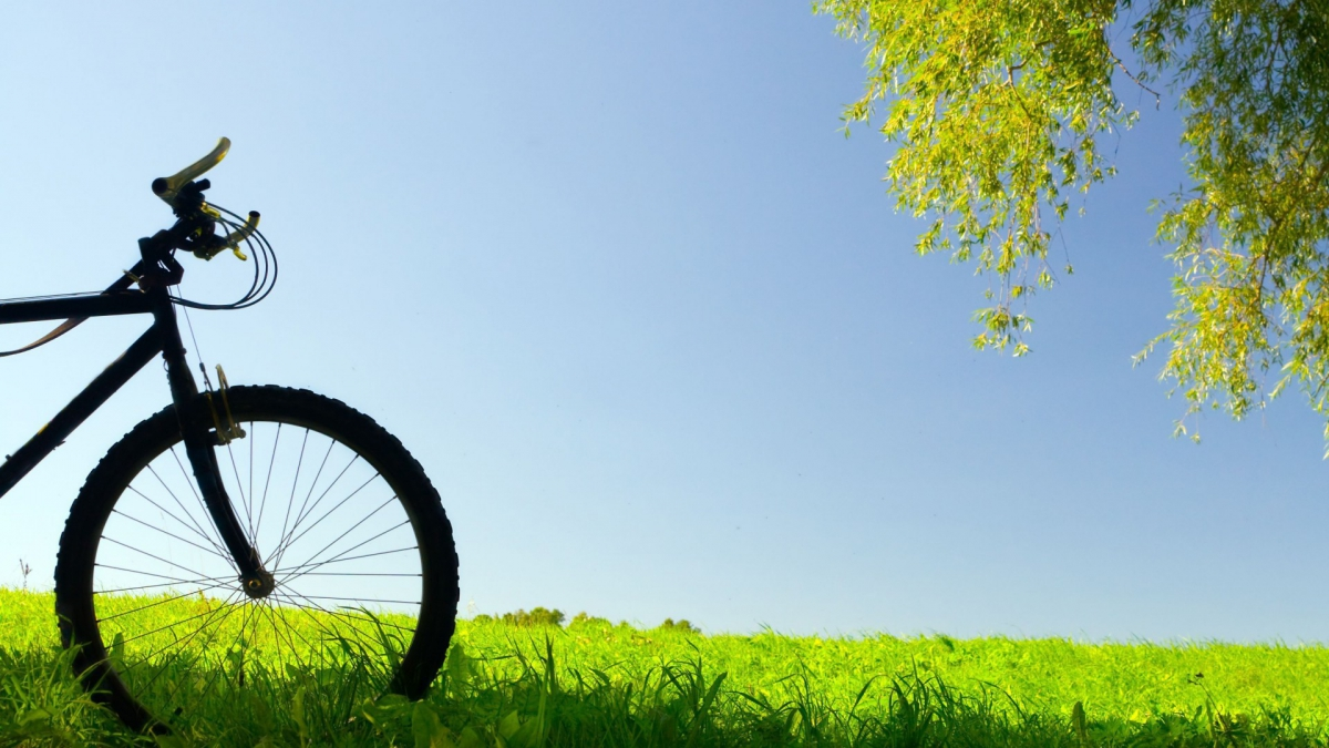 Creative_Wallpaper_Bicycling_in_the_field_082335_.jpg