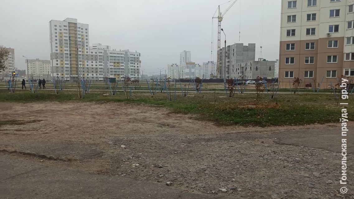 Что будет с ремонтом дороги в районе улиц Жемчужной и Кристалловской в Гомеле?